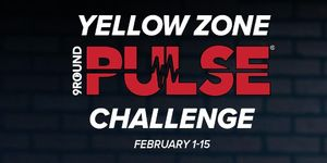 Feb 1-15 2020 PULSE Yellow Zone Challenge