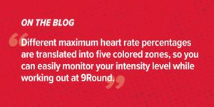 Simple Breakdown of the Pulse Heart Rate Monitor