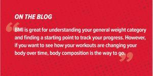 BMI vs Body Composition
